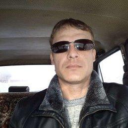 Михаил, 40 лет, Ребриха