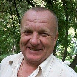Алексей Бондаренко, 67 лет, Александрия