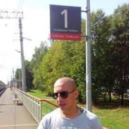Виктор, 31 год, Сургут