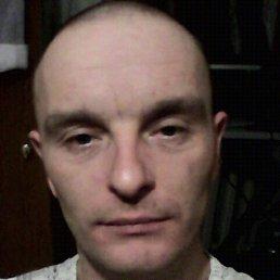 Денис, 37 лет, Свободный