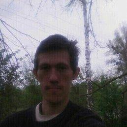 Тарас, 25 лет, Житомир