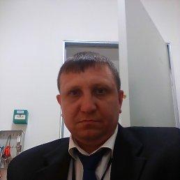 Олег, 44 года, Оленино