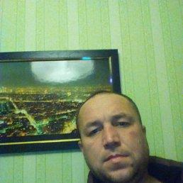 Андрей, 37 лет, Вавож