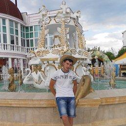Дмитрий, 29 лет, Павловск