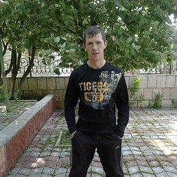 Вова, 28 лет, Шахтерск