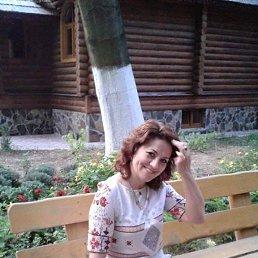 Наталія, 50 лет, Дубно