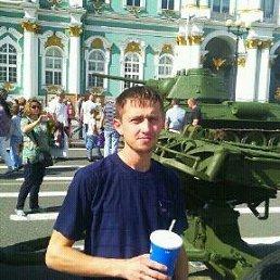Андрей, 31 год, Коркино