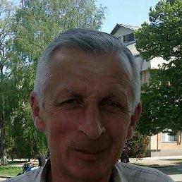 Viktor, 66 лет, Чигирин