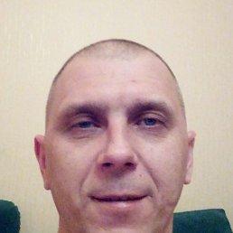 Альберт, 42 года, Курск