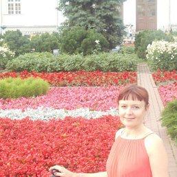 Наташа, 36 лет, Новокузнецк
