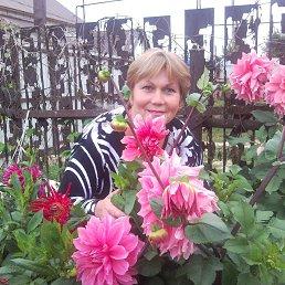 Светлана, 56 лет, Грязи