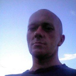 Александр, 42 года, Моршанск