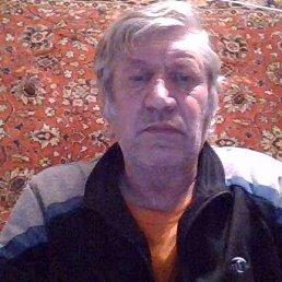 Александр Солонин, 63 года, Заполярный
