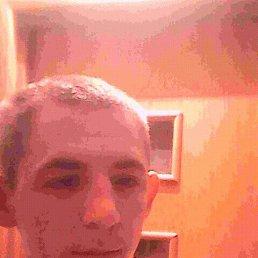 Гриша, 24 года, Тихвин