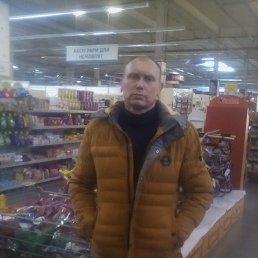 alex, 44 года, Сумы