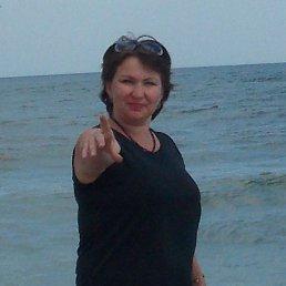 Наталия, 43 года, Алчевск