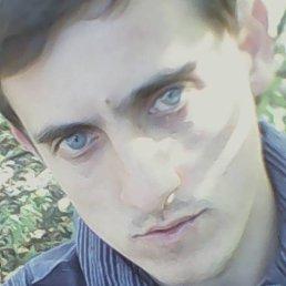 Владимир, 30 лет, Ромны