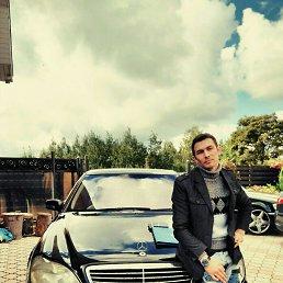 Александр, 29 лет, Балтийск
