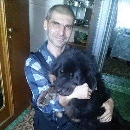 Виталий, 46 лет, Сенгилей