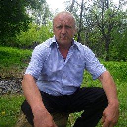 Валера, 61 год, Городок