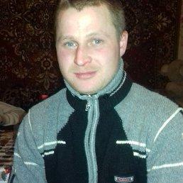 Игорь, 27 лет, Белополье
