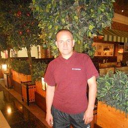 сергей, 39 лет, Рязань