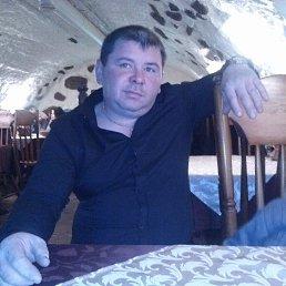 Николай, 44 года, Ува