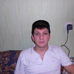Дамир, 33 года, Пестрецы