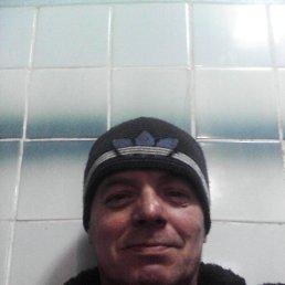 владимир, 50 лет, Волово