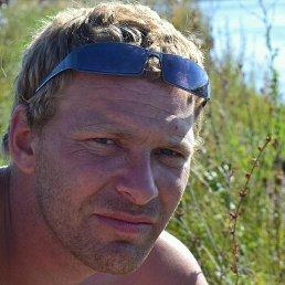 Игорь, 36 лет, Курлово