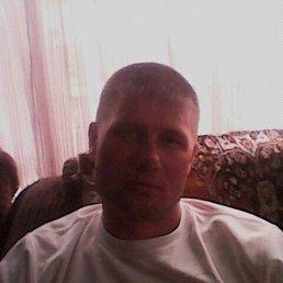 Алексей, 40 лет, Алтайское