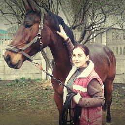 Виктория, 29 лет, Донецк
