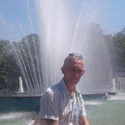 Николай, 43 года, Новокубанск