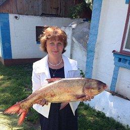 Дина, 53 года, Одесса