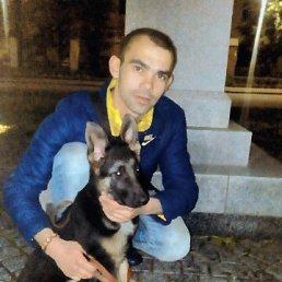 Влад, 24 года, Фастов