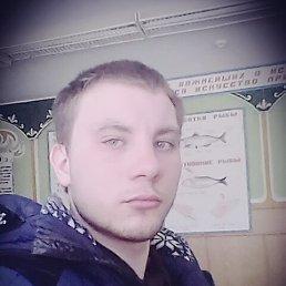 Николай, 25 лет, Торбеево