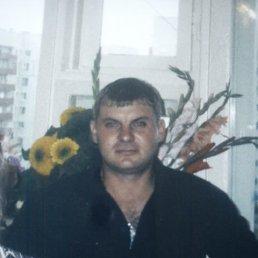 Егор, 40 лет, Лесной