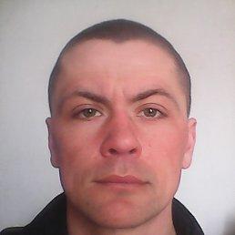 Денис, 35 лет, Снигиревка