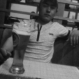 Тимур, 24 года, Кировград