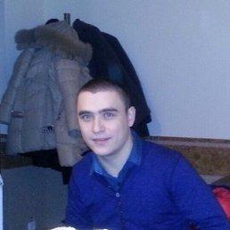 Алексей, 30 лет, Корсунь-Шевченковский