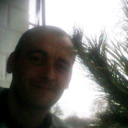 Валера, 39 лет, Кролевец