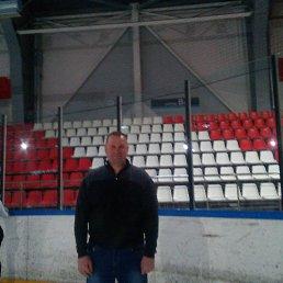 Алексей, 45 лет, Будогощь