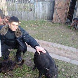 Дмитрий, , Малин