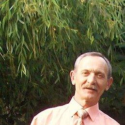 Александр, 61 год, Новопокровская