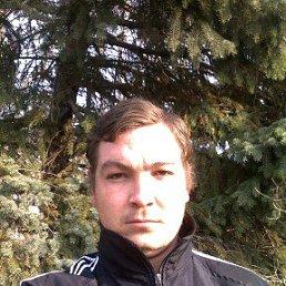 Владимир, 28 лет, Гулькевичи