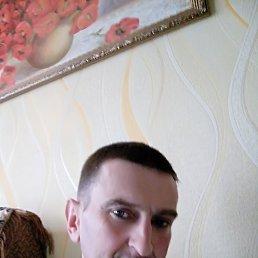 руслан, 47 лет, Лебедин