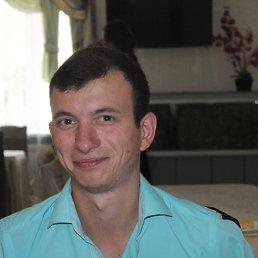 Андрей Доник, 31 год, Новоднестровск