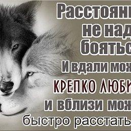 Фото Сергей, Воронеж - добавлено 6 июня 2018