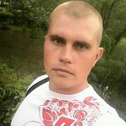 Евгений, 30 лет, Гай