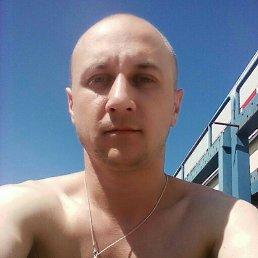 Владимир, 33 года, Волосово